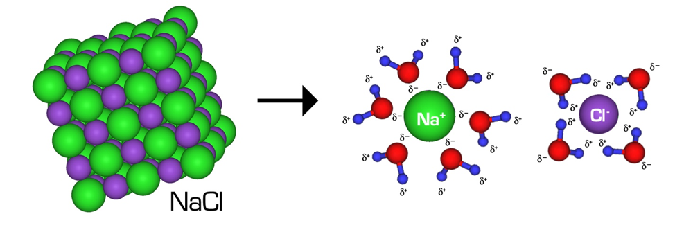 Scientific diagram of NaCl being dissolved by H2O