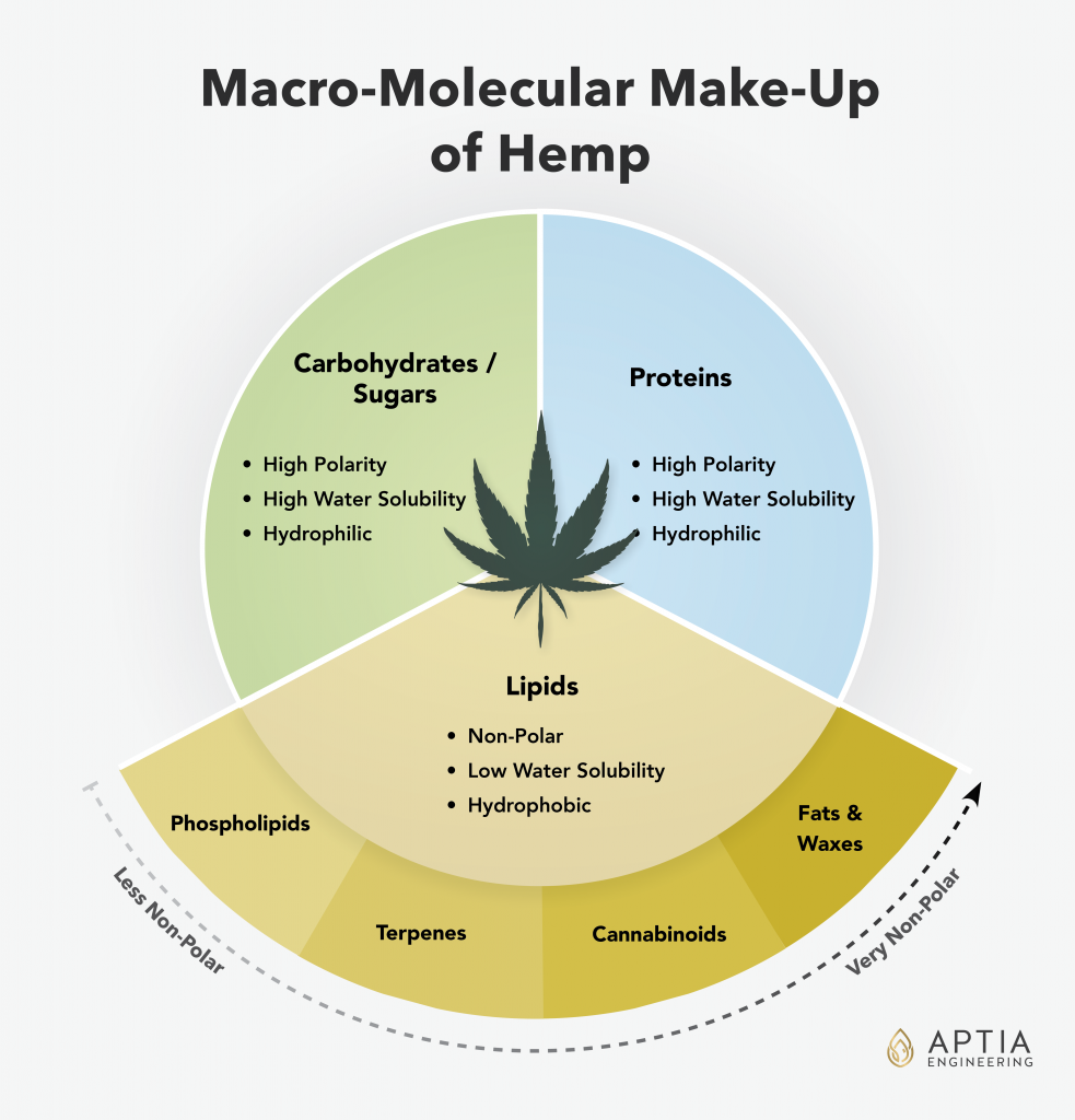 Molecular Compounds in Hemp Illustration